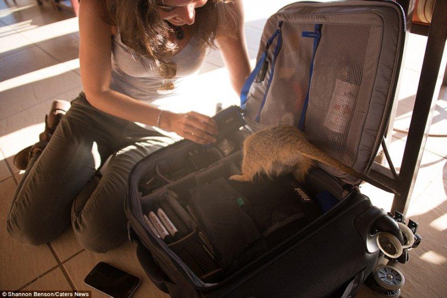 Смелый фотограф из ЮАР, с которой даже дикие звери становятся ручными