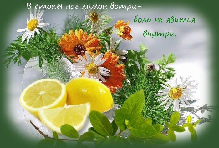 Пища для счастья