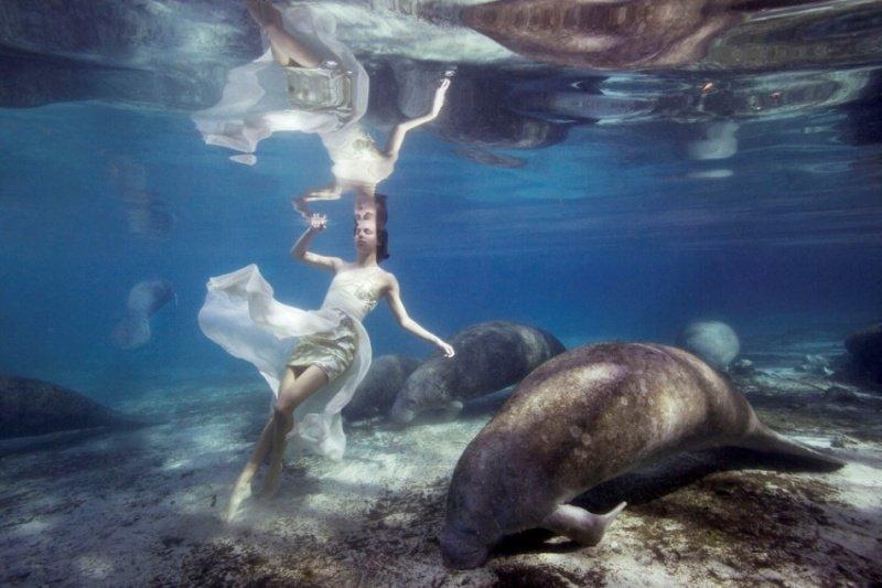 Модели с морскими гигантами