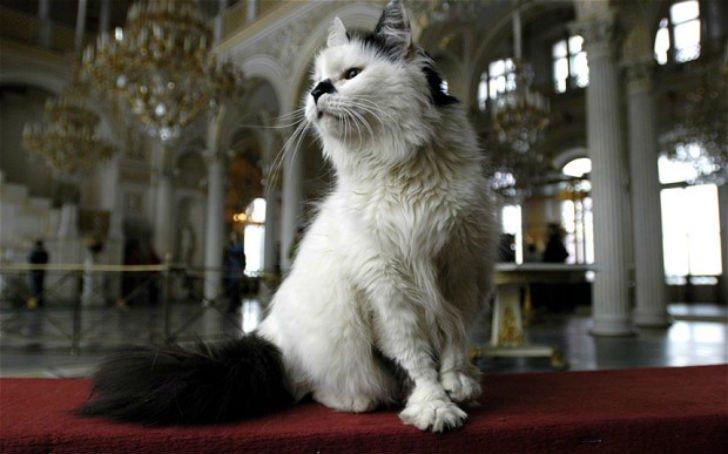 Россия глазами англичан: «Они маринуют всё — огурцы, свеклу и бывших лидеров»