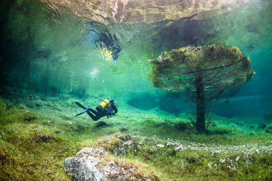 Парк, погруженный под воду