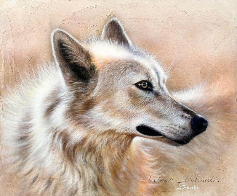 Потрясающие реалистичные рисунки животных от Sandi Baker