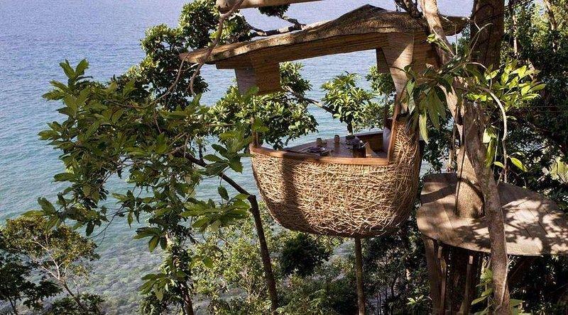 Необычный ресторан «Птичье гнездо», расположенный на дереве