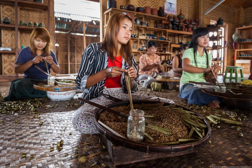 Как выращивают овощи на озерах в Мьянме
