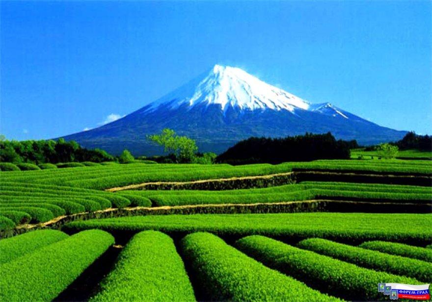 Гора Фудзи – символ Японии
