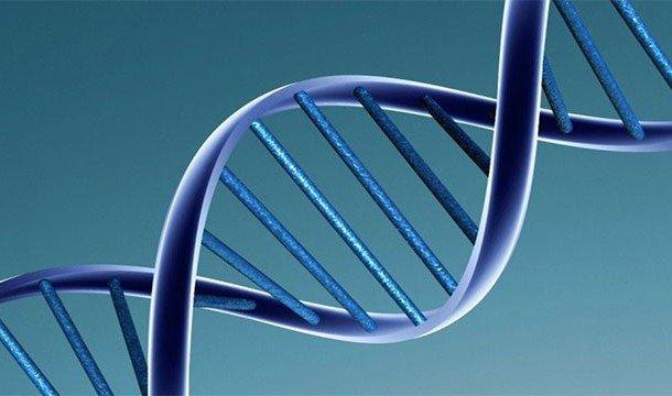 Познавательные факты про ДНК, благодаря которым вы узнаете о себе немного больше