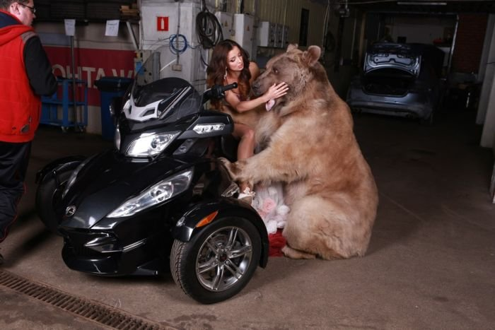 Фотосессия девушки с медведем (20 фото)