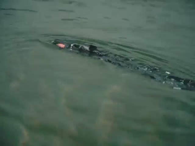 Подводного робота-змею создали в Норвегии