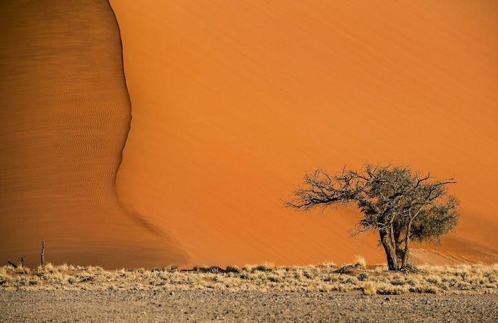 Невероятно яркие пейзажи