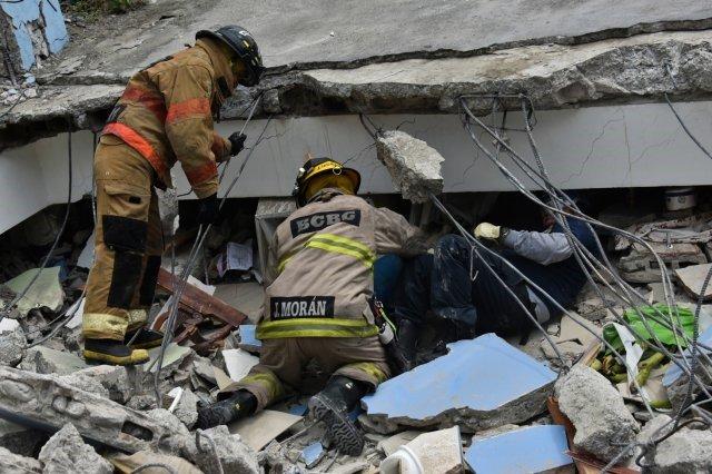 Из-под завалов пес спас 7 человек  (3 фото)