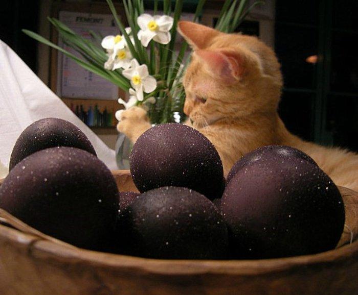 Примеры изумительного декора яиц к светлому празднику Пасхи