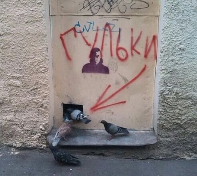 Русская философия на наших стенах (39 фото)
