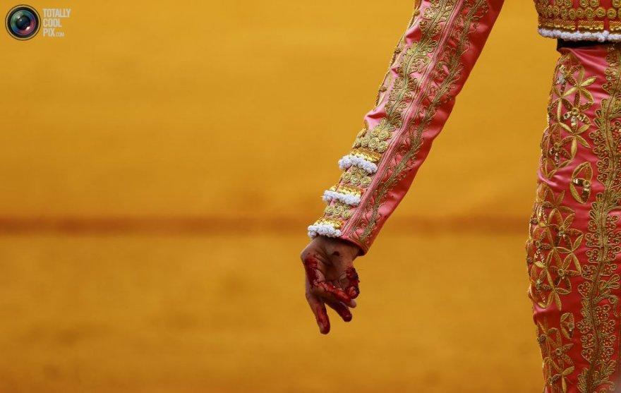 Коррида – кровавое искусство