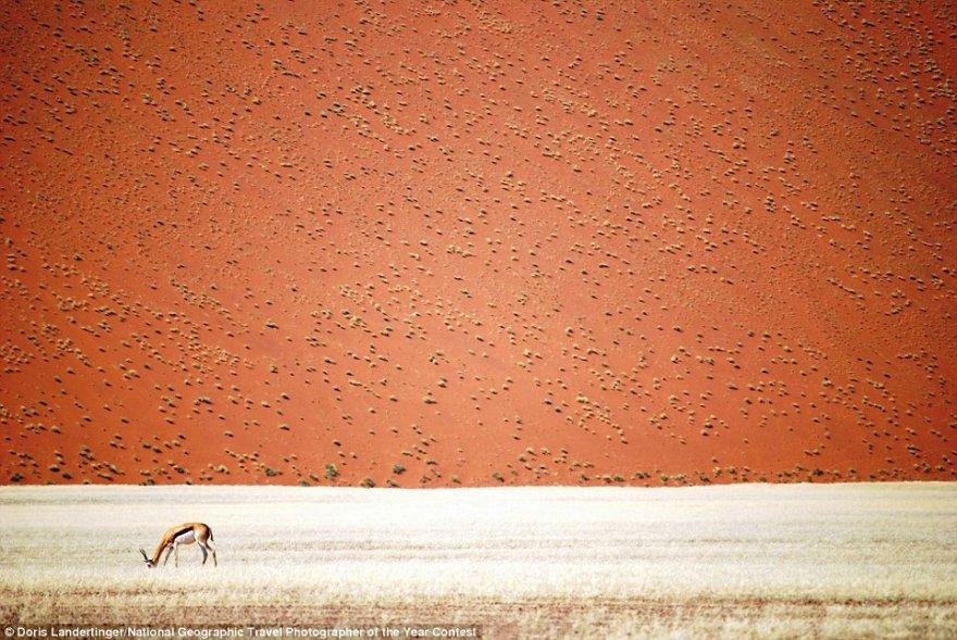 В самом разгаре приём работ на фотоконкурс National Geographic Travel Photographer of the Year Contest 2016