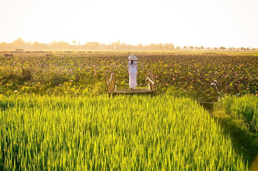 Вьетнамские женщины в традиционном костюме аозай