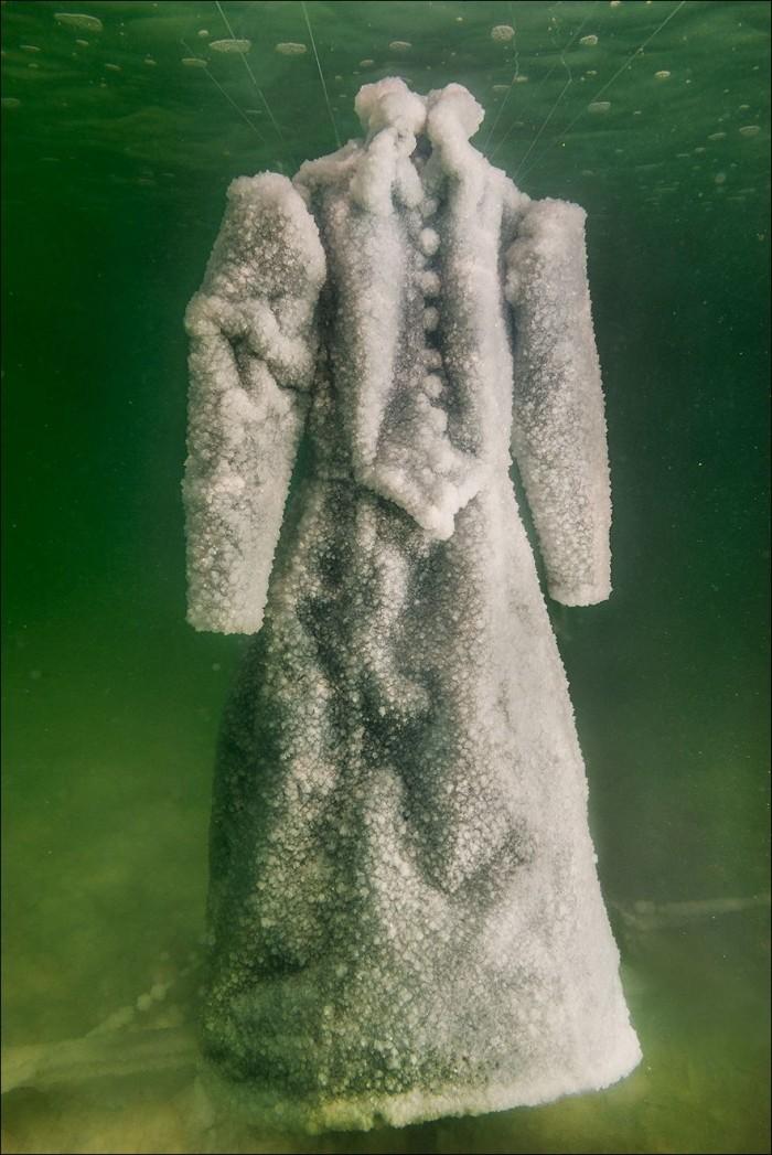 Художница засолила платье