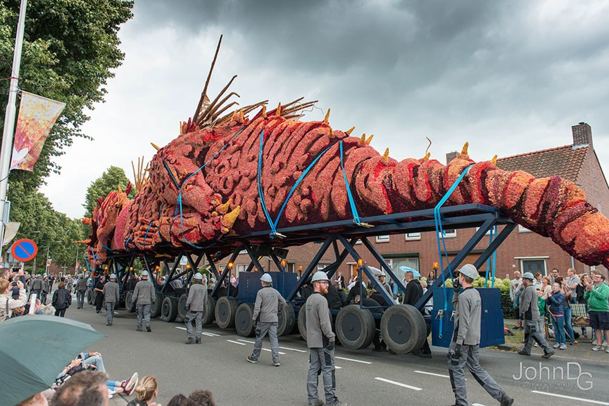 Невероятное зрелище! В Голландии прошел парад гигантских цветочных скульптур