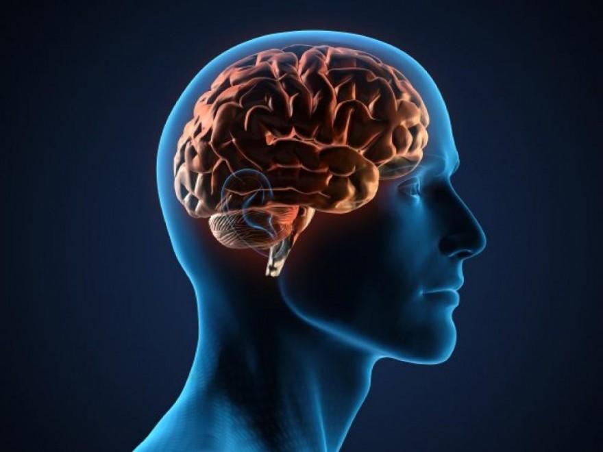 Найден простой способ улучшения памяти