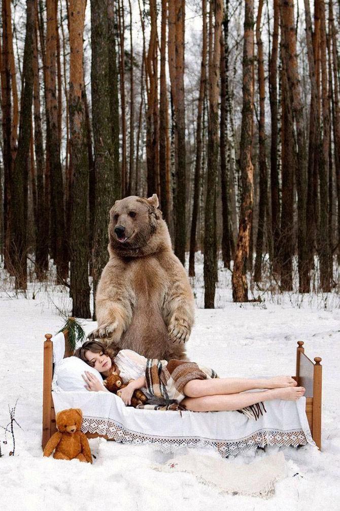 Сказочная фотосессия медведя Степана