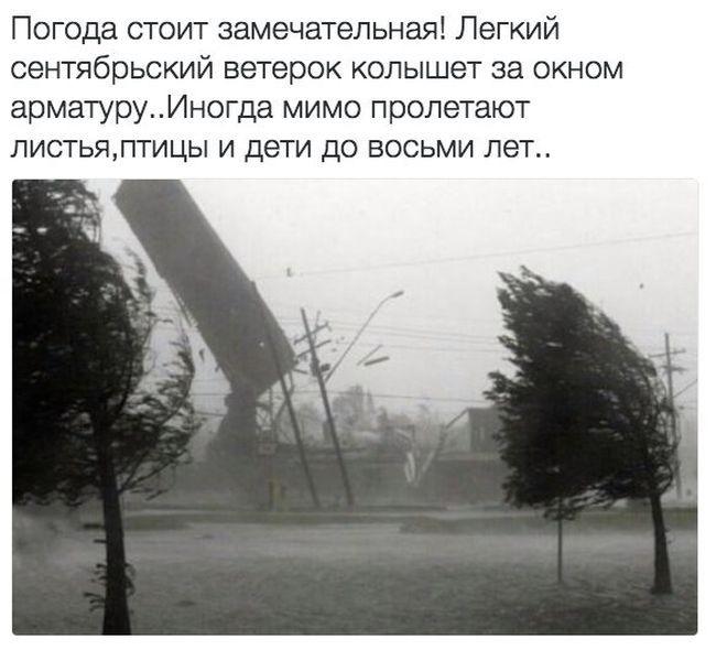 Подборка прикольных картинок (90 фото)