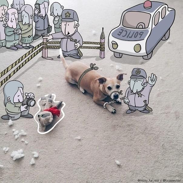 Смешные рисунки к случайным фотографиям