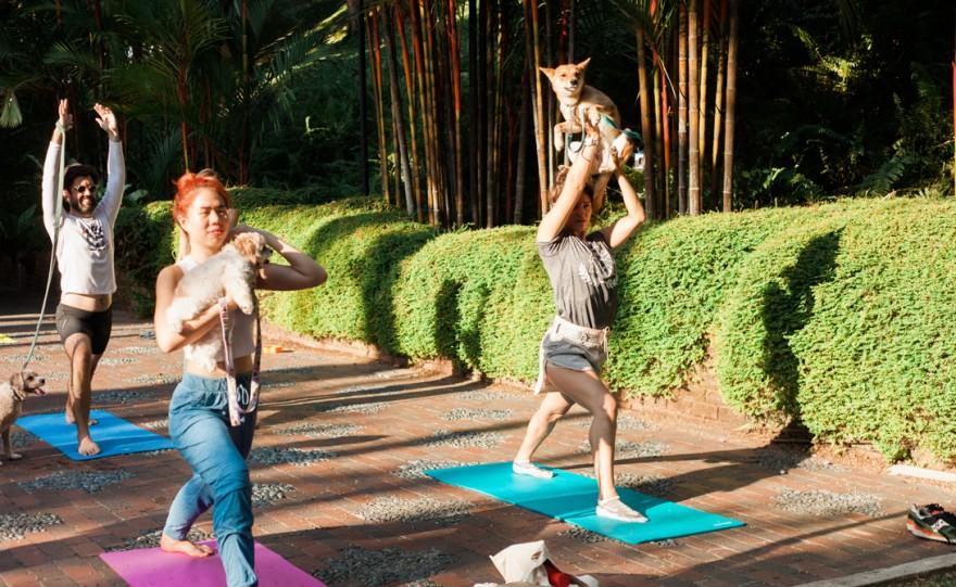 7 безумных тренировок, которые вы просто обязаны попробовать