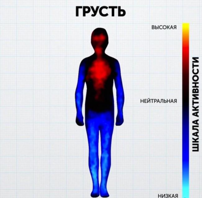 Ученые показали, как на самом деле выглядят наши эмоции