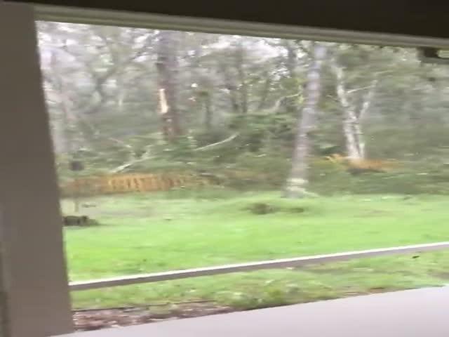 Страшная сила урагана «Мэтью»