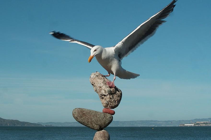 Коллекция сбалансировано установленных камней