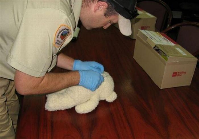 Контрабанда в детской игрушке (3 фото)