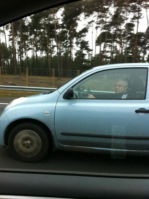 Курьезы на дорогах в Нидерландах (25 фото)