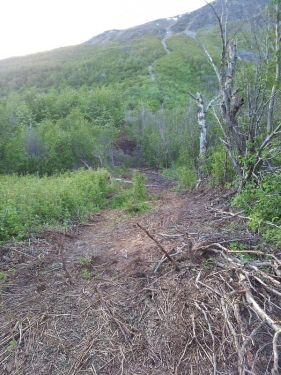 С горы скатился валун (4 фото)