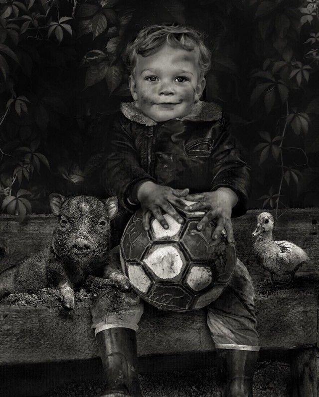 Сказочный мир Марселя ван Льюита (24 фото)