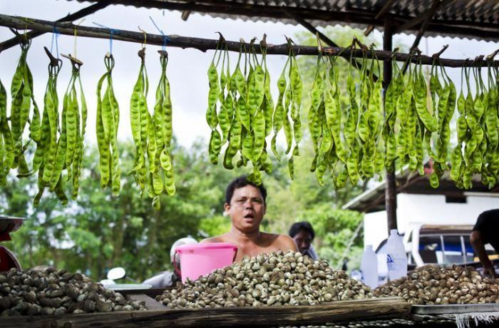 Чем заняться в Таиланде в низкий сезон (8 фото)