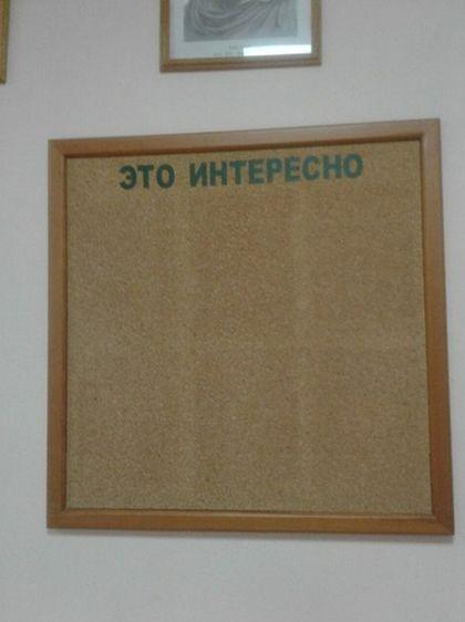 Подборка прикольных фотографий (123 фото)