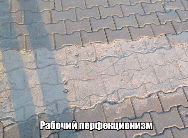 Подборка прикольных фотографий (101 фото)