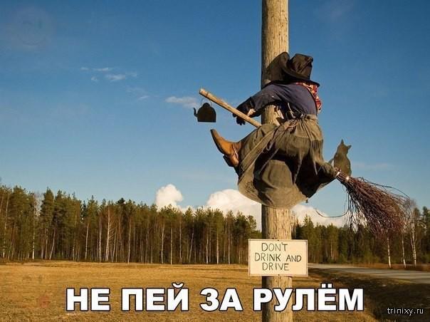 Смешные картинки с надписями (28 фото)