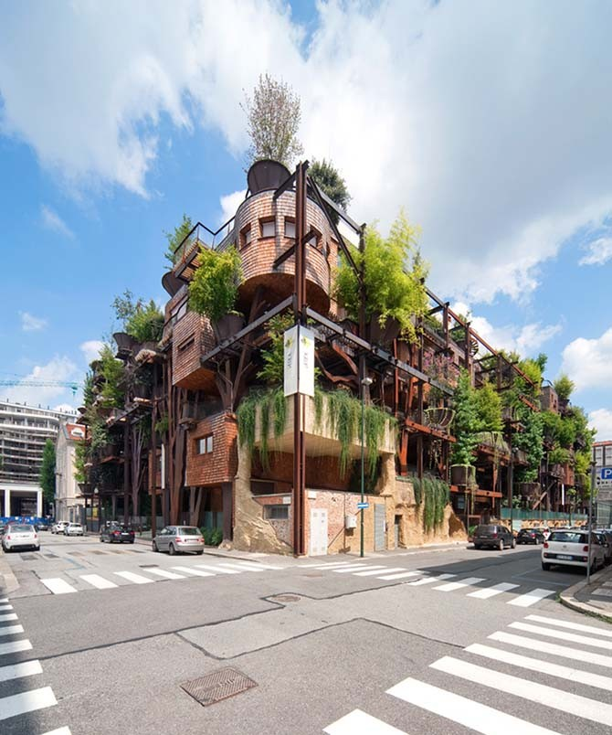 Городской дом на дереве (13 фото)