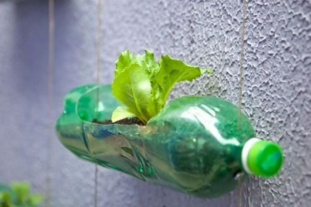 Гениальные креативные творения из пластиковых бутылок (25 фото)