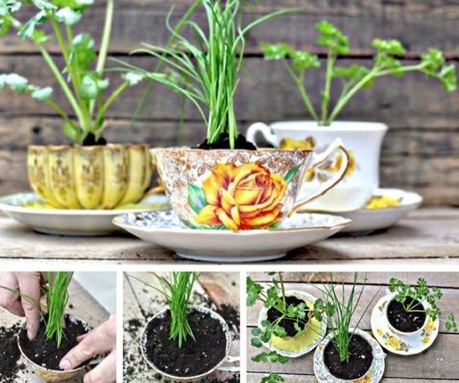 20 маленьких садов, которые поместятся в ладошке (21 фото)