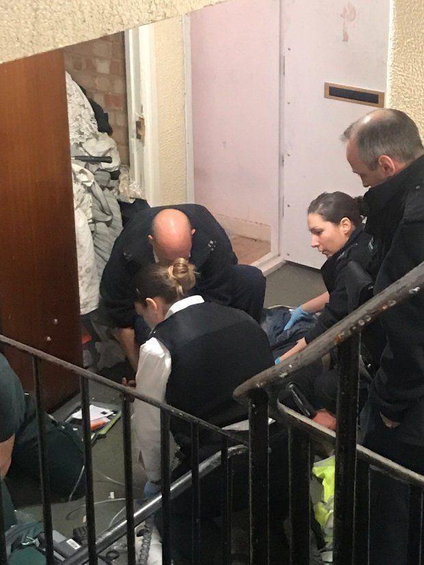 Cтаффордширский терьер съел кокаин и перегрыз горло хозяину (4 фото)
