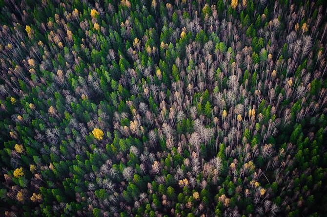 Россия в лучших фотографиях клуба National Geographic (21 фото)