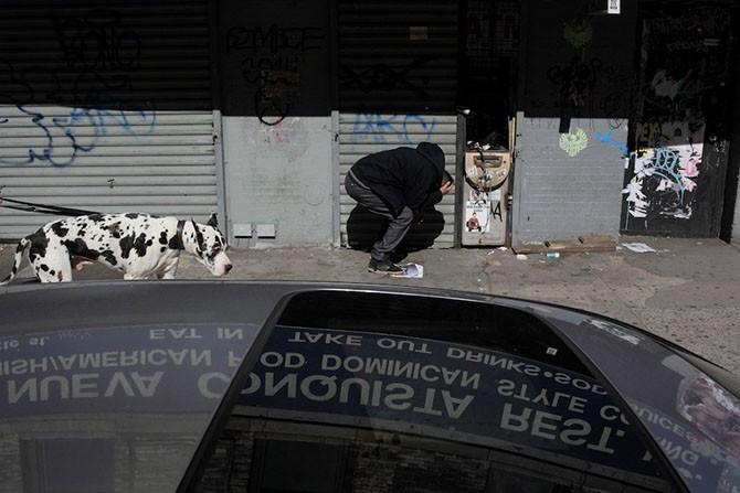 Улицы Нью-Йорка в фотографиях Шэйна Грейя (20 фото)