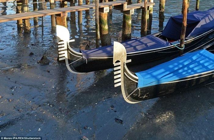 Каналы Венеции ежегодно обнажают свое заиленное дно (12 фото)