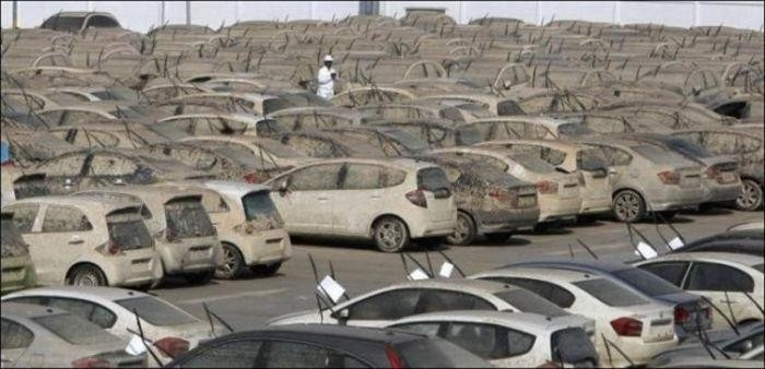 Хонда утилизирует 1055 новых автомобилей-утопленников (7 фото)