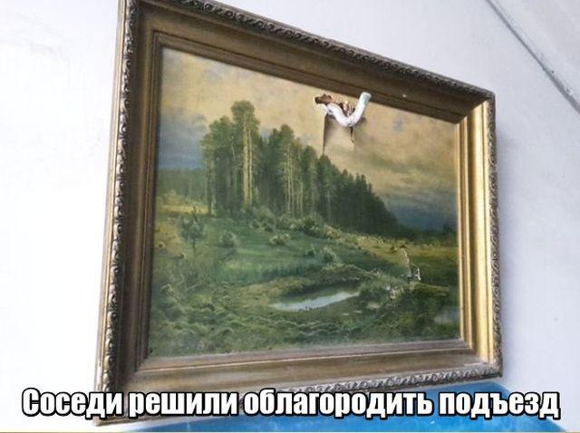 Подборка прикольных фотографий (102 фото)