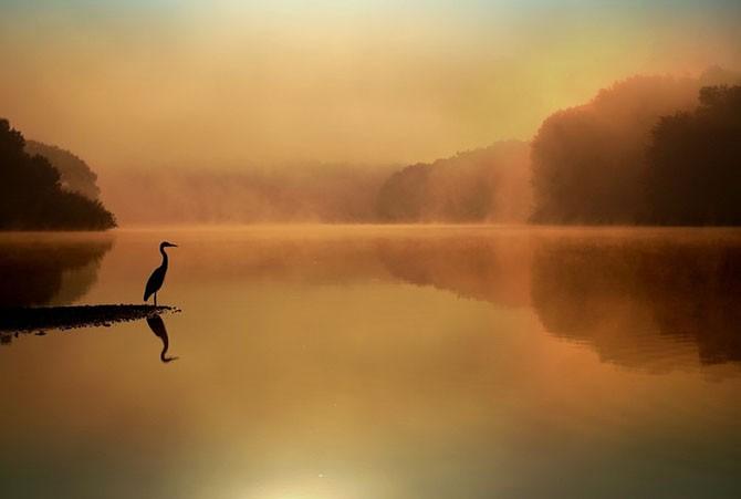 Лучшие снимки, сделанные на рассвете (20 фото)