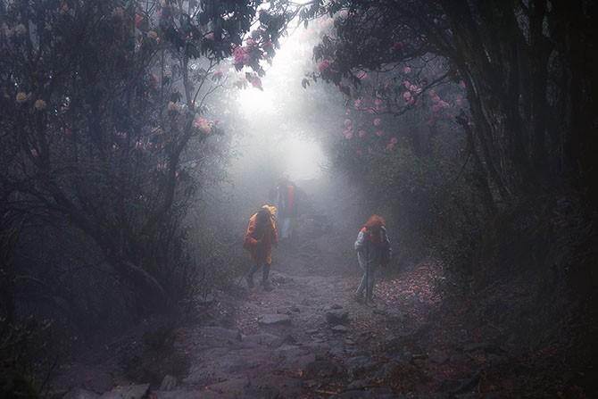 Путешествие по территории мистических пейзажей (23 фото)