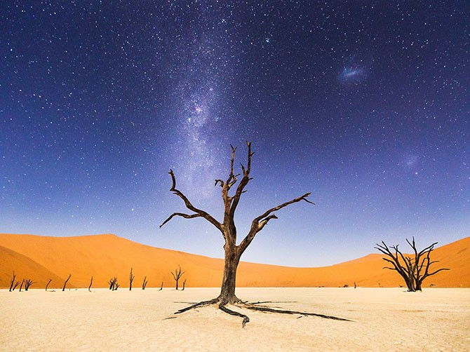 Лучшие фотографии от National Geographic (19 фото)