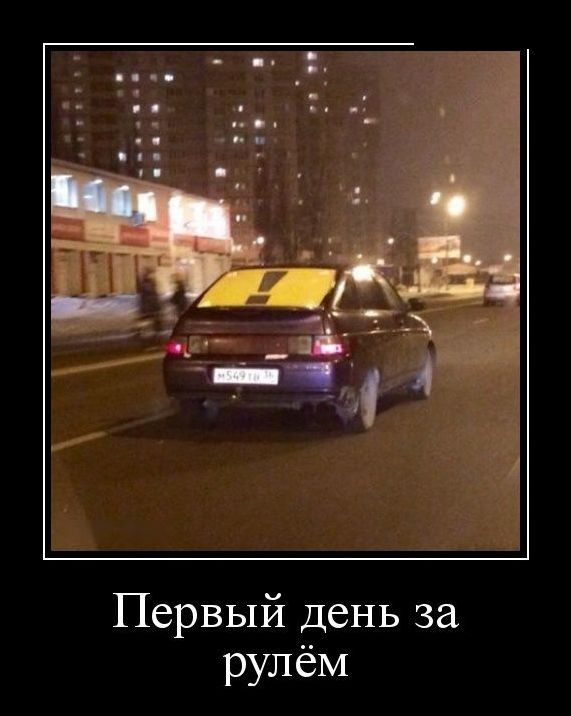 Новички на дороге (16 фото)